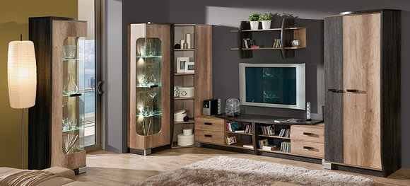 wohnwand anbauwand 7 teilig mit vitrine rtv regal schrankwand eiche wohnzimmer sofort lieferbar. Black Bedroom Furniture Sets. Home Design Ideas